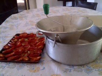 tomates salon